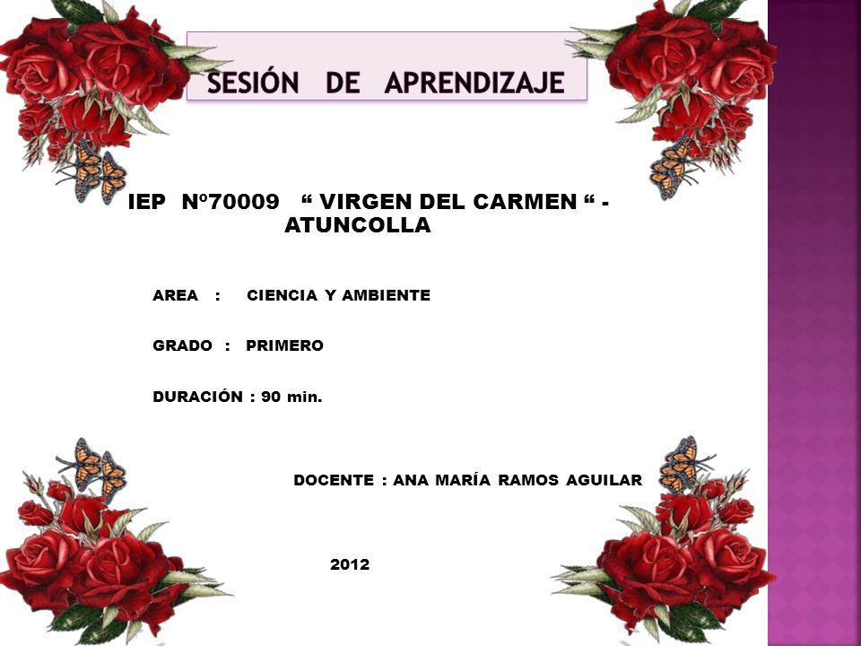 IEP Nº70009 VIRGEN DEL CARMEN - ATUNCOLLA