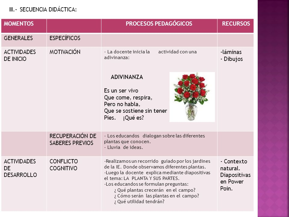 III.- SECUENCIA DIDÁCTICA: MOMENTOS PROCESOS PEDAGÓGICOS RECURSOS