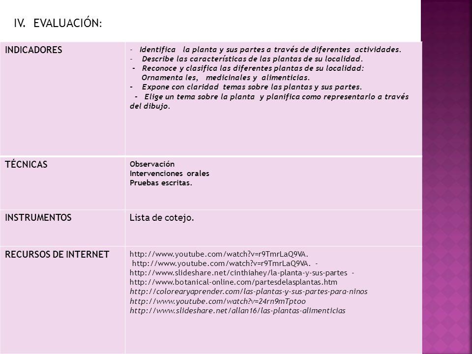 IV. EVALUACIÓN: INDICADORES TÉCNICAS INSTRUMENTOS Lista de cotejo.