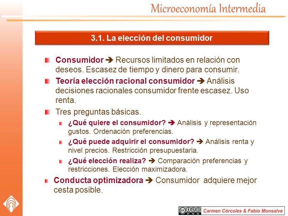 3.1. La elección del consumidor