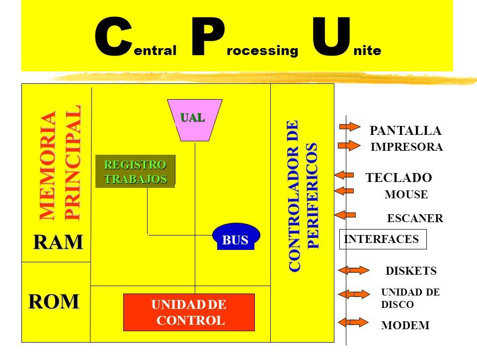 Central Processing Unite