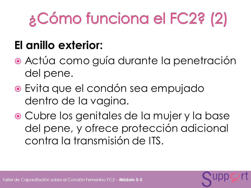 ¿Cómo funciona el FC2 (2) El anillo exterior: