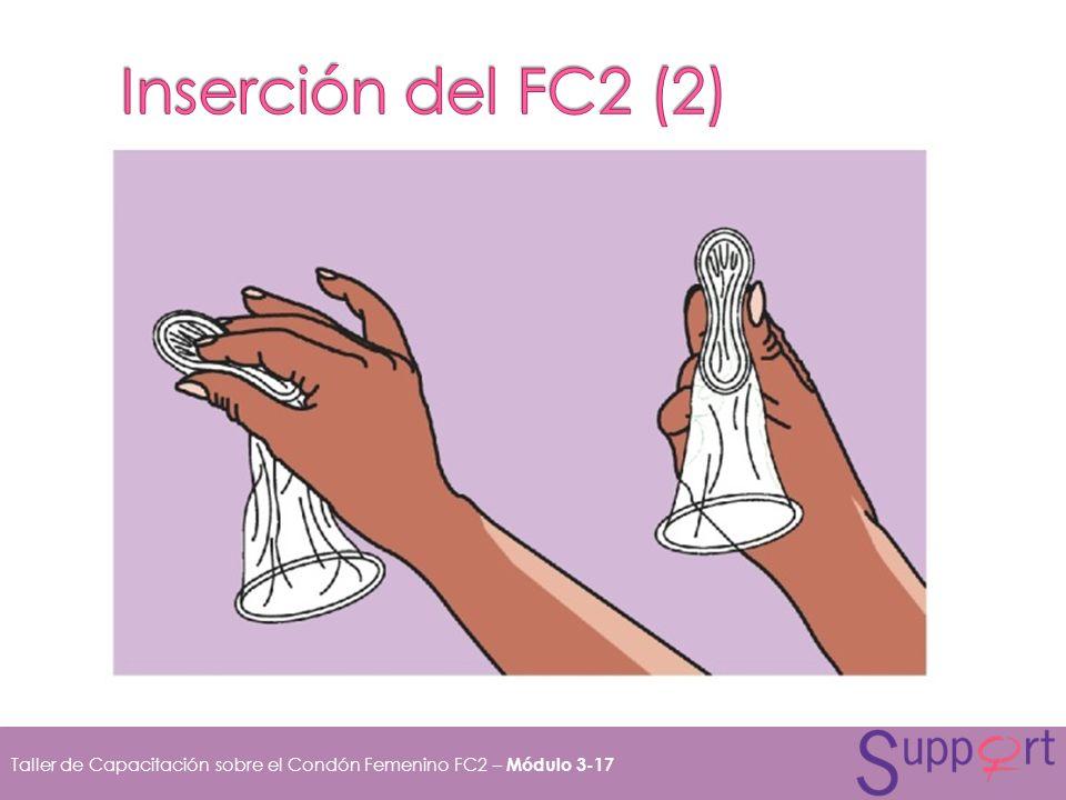 Inserción del FC2 (2)