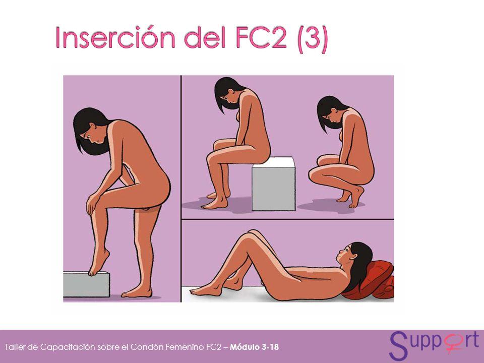 Inserción del FC2 (3)