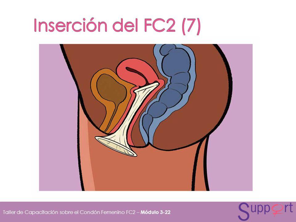Inserción del FC2 (7)