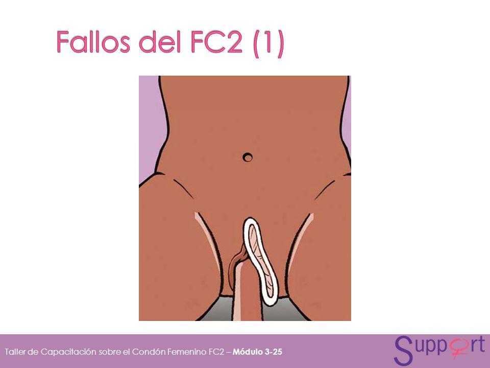 Fallos del FC2 (1)