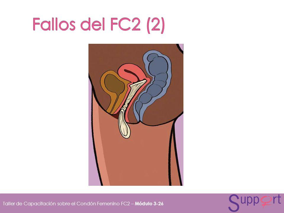 Fallos del FC2 (2)