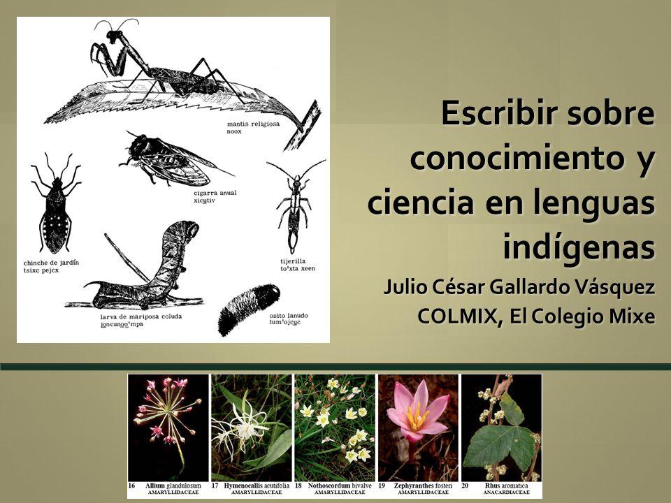 Escribir sobre conocimiento y ciencia en lenguas indígenas