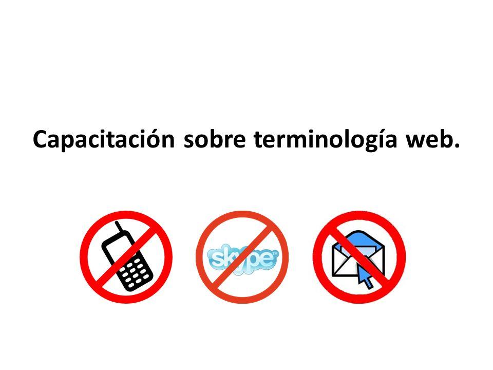 Capacitación sobre terminología web.