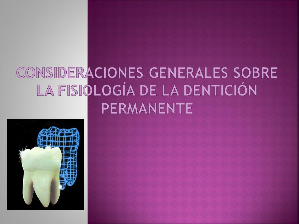 Consideraciones generales sobre la fisiología de la dentición permanente