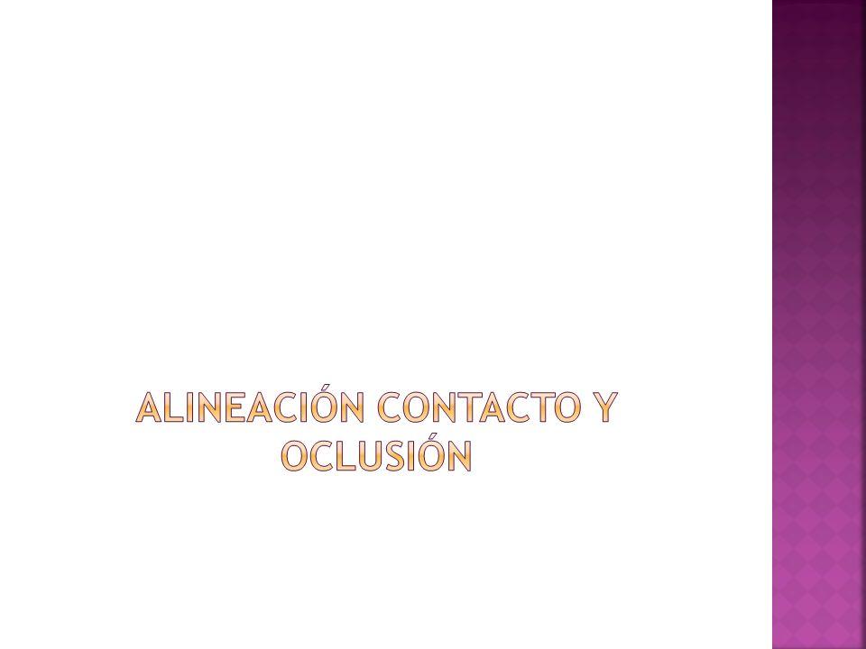 Alineación contacto y oclusión