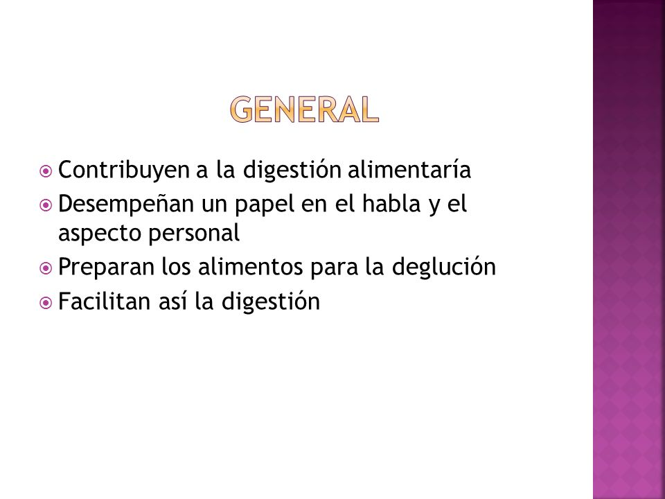 general Contribuyen a la digestión alimentaría