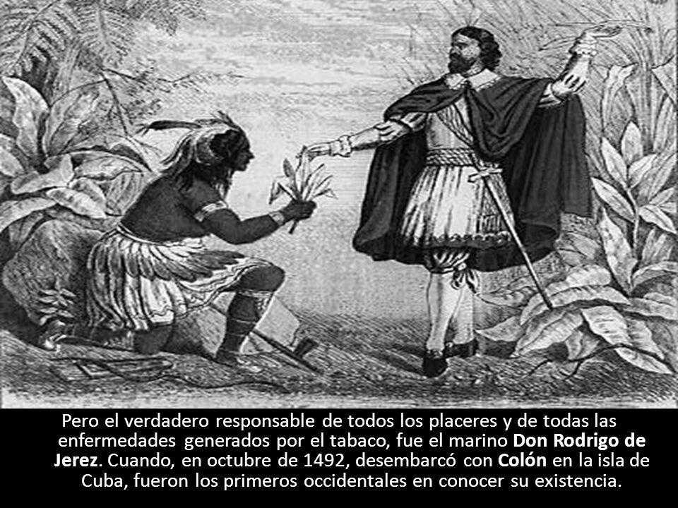 Pero el verdadero responsable de todos los placeres y de todas las enfermedades generados por el tabaco, fue el marino Don Rodrigo de Jerez.