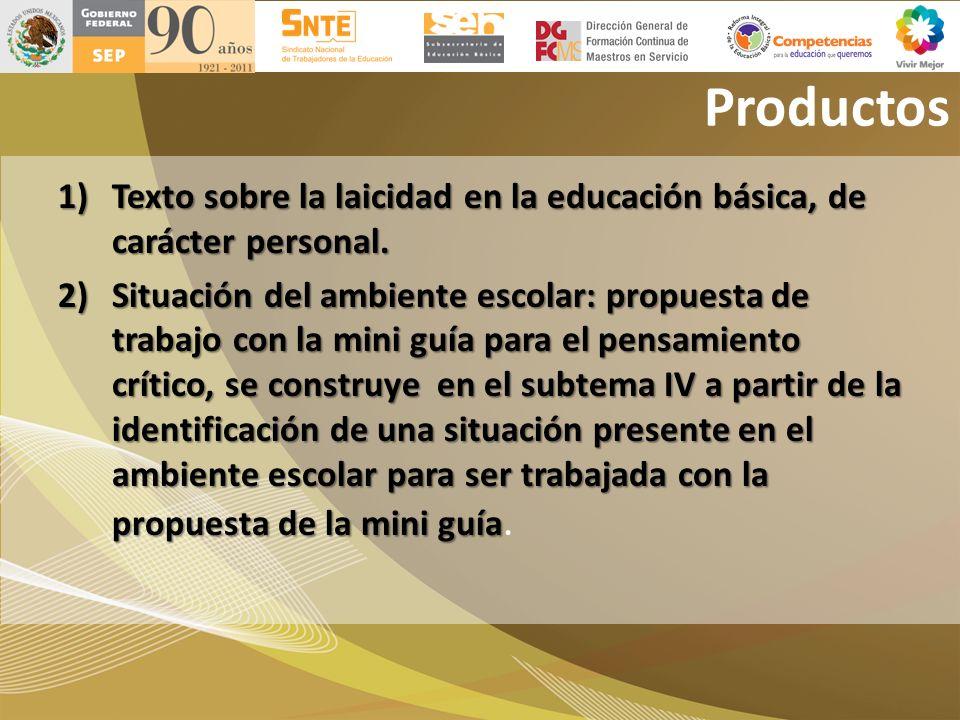 Productos Texto sobre la laicidad en la educación básica, de carácter personal.