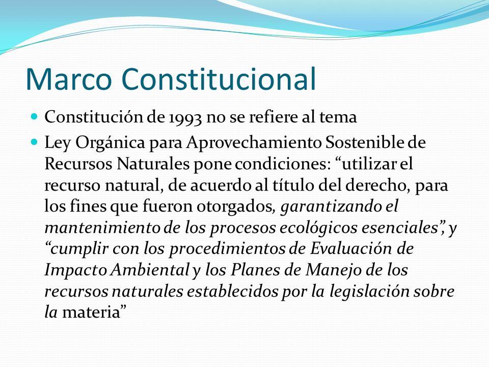 Marco Constitucional Constitución de 1993 no se refiere al tema