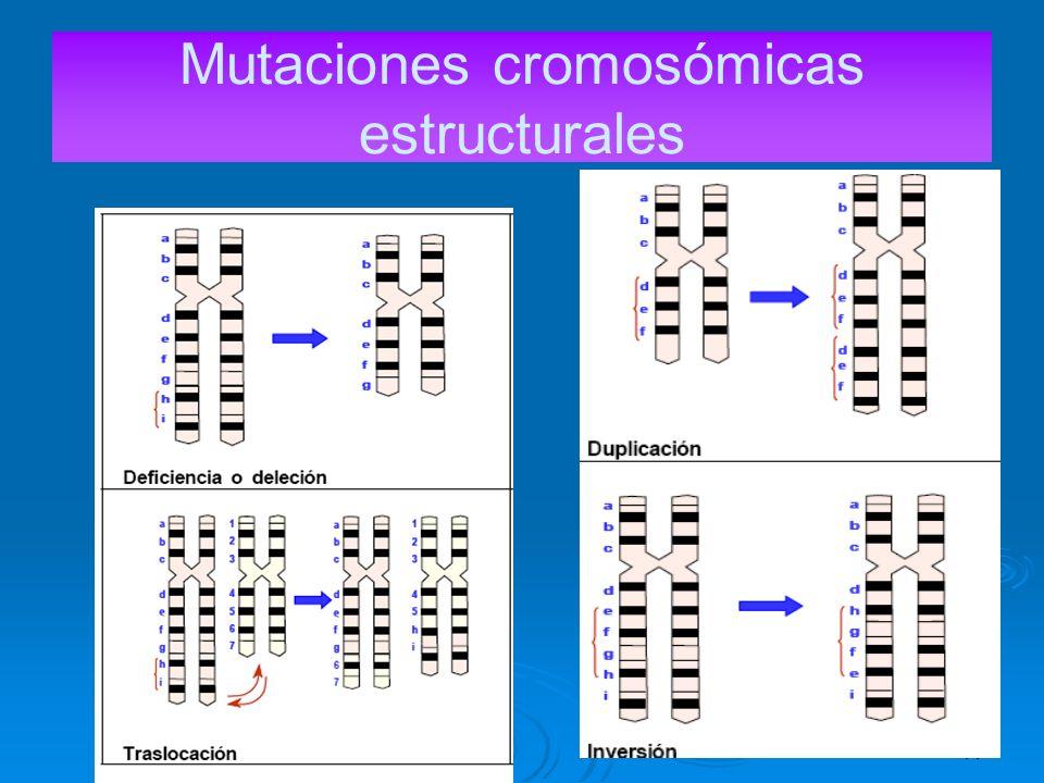 Mutaciones cromosómicas estructurales