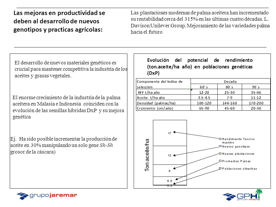 Las mejoras en productividad se deben al desarrollo de nuevos genotipos y practicas agrícolas: