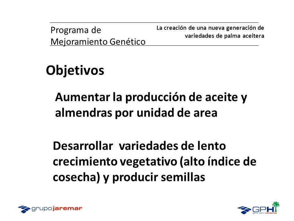 Programa de Mejoramiento Genético