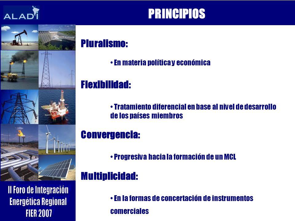 PRINCIPIOS Pluralismo: Flexibilidad: Convergencia: Multiplicidad: