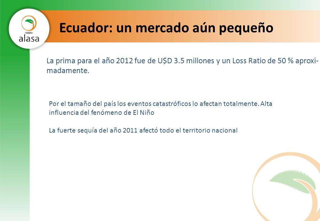 Ecuador: un mercado aún pequeño