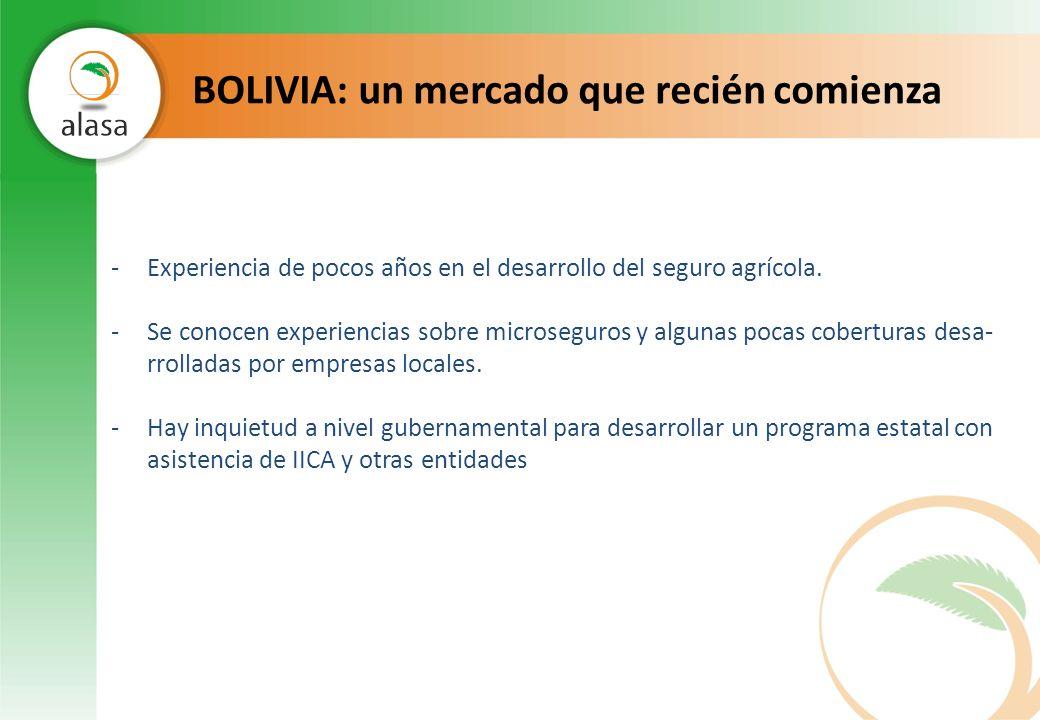 BOLIVIA: un mercado que recién comienza