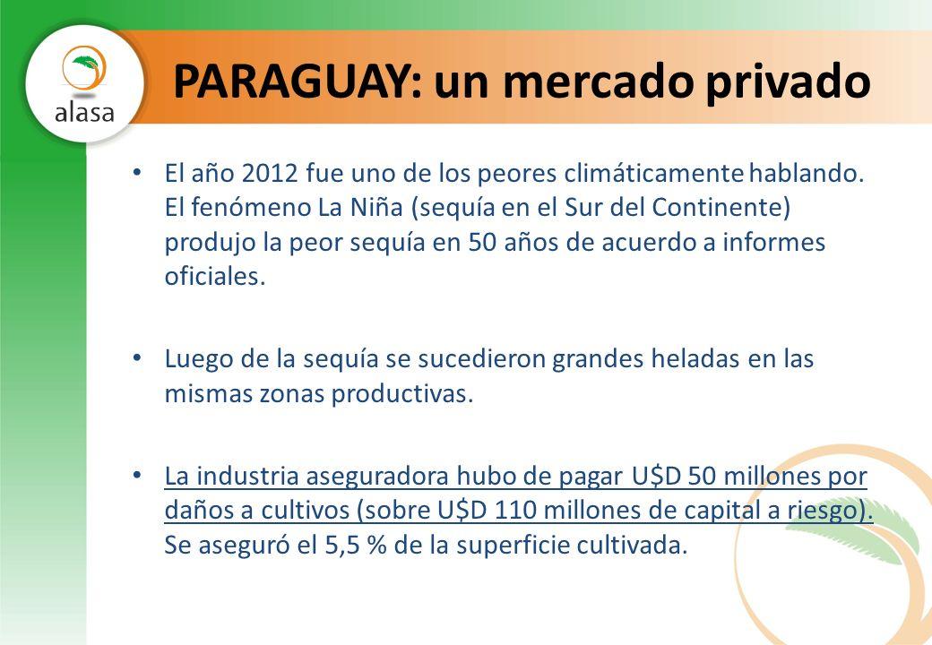 PARAGUAY: un mercado privado