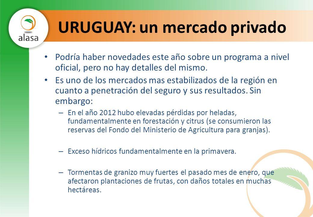 URUGUAY: un mercado privado