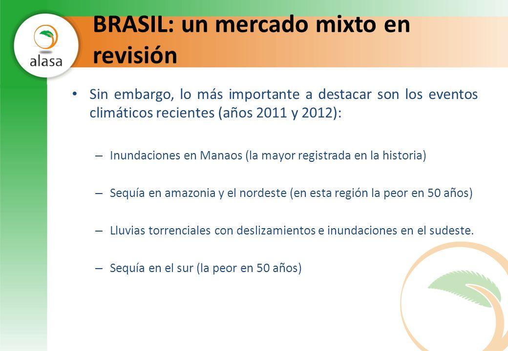 BRASIL: un mercado mixto en revisión