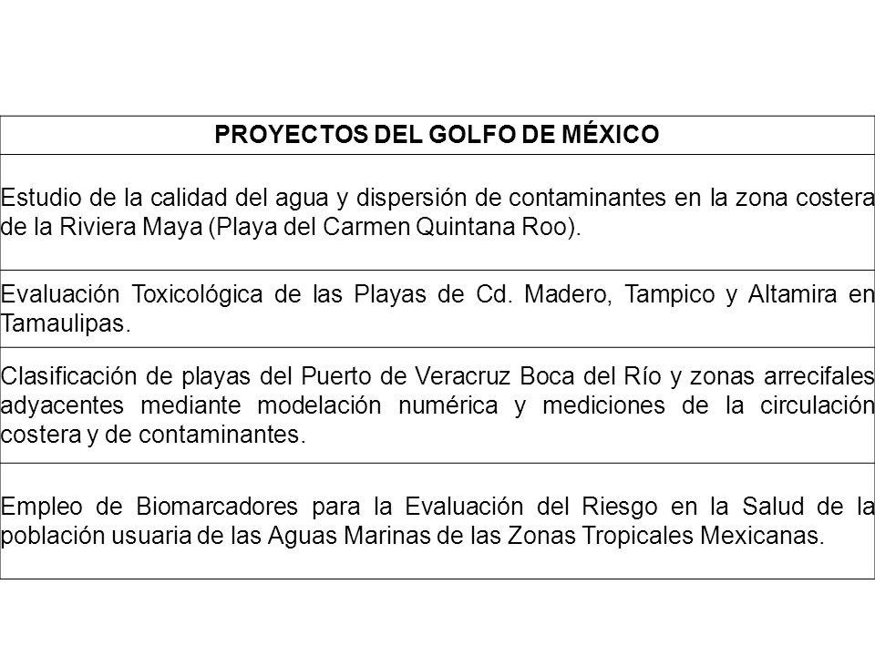 PROYECTOS DEL GOLFO DE MÉXICO
