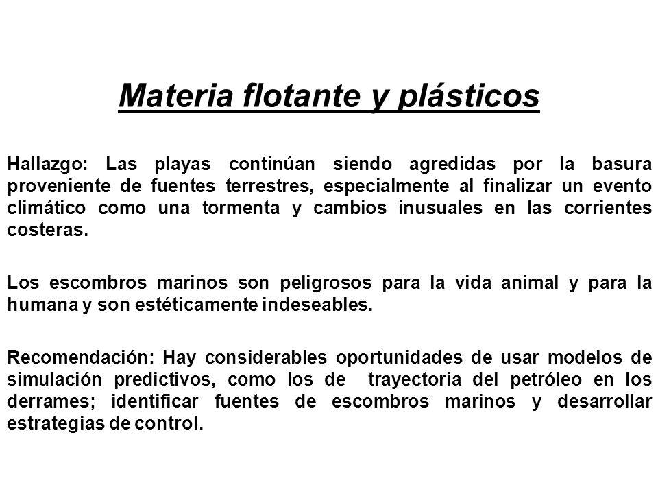 Materia flotante y plásticos