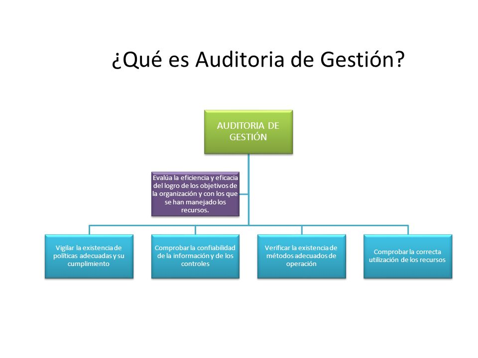 ¿Qué es Auditoria de Gestión