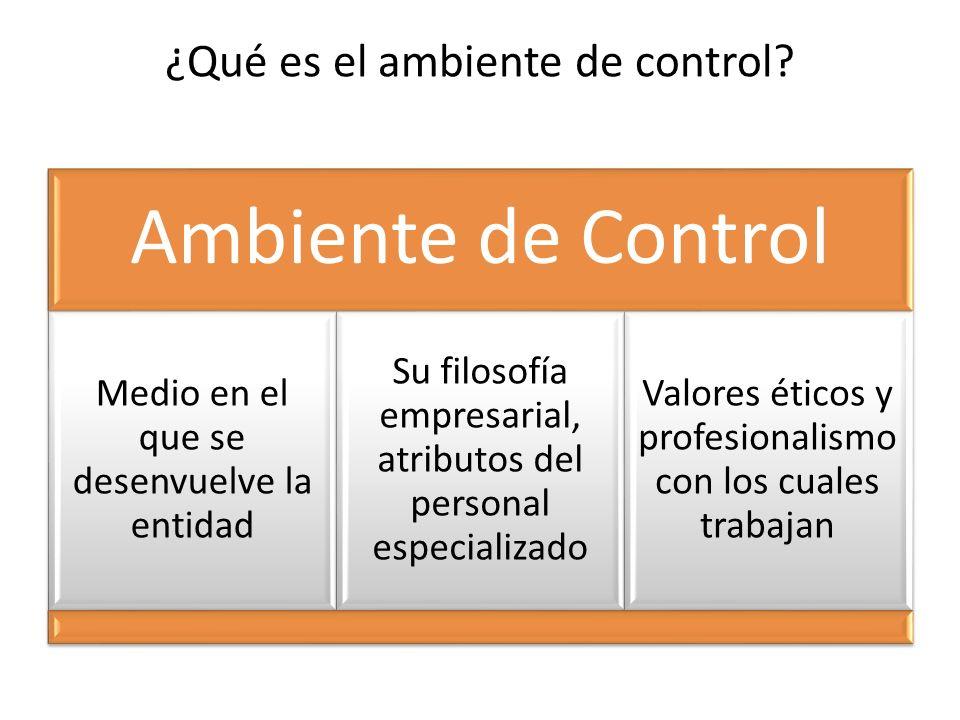 ¿Qué es el ambiente de control