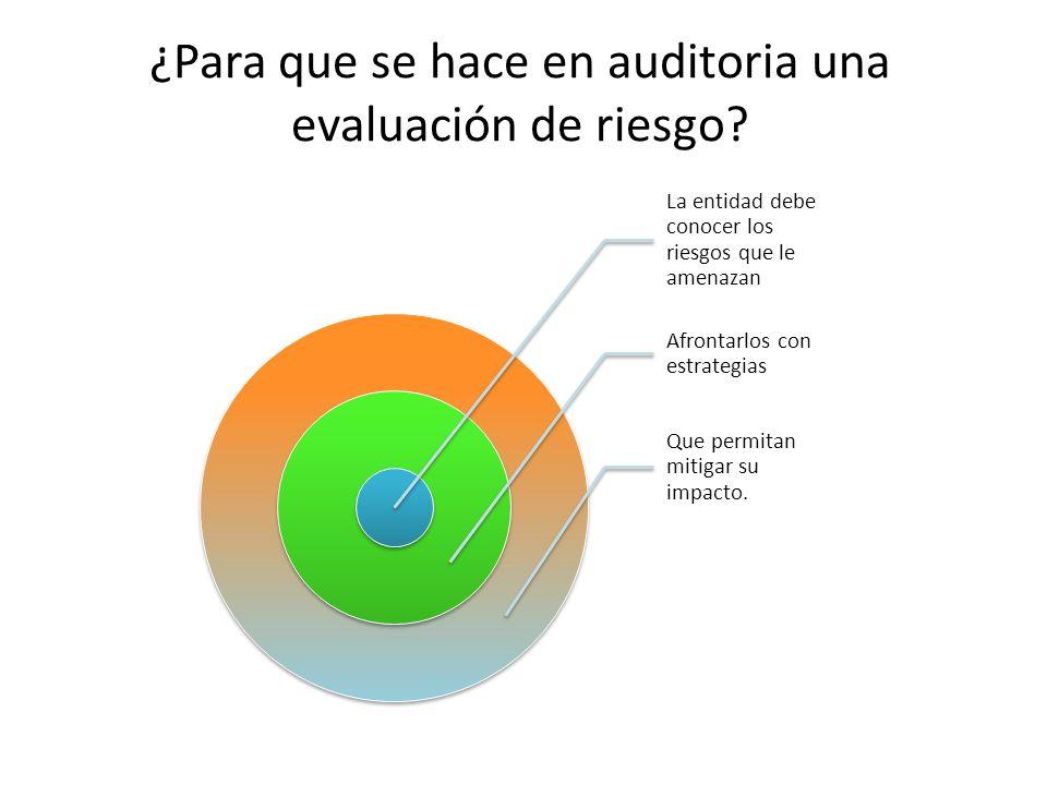 ¿Para que se hace en auditoria una evaluación de riesgo