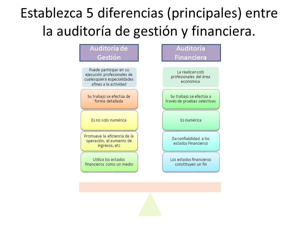 Establezca 5 diferencias (principales) entre la auditoría de gestión y financiera.