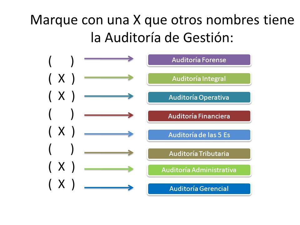 Marque con una X que otros nombres tiene la Auditoría de Gestión: