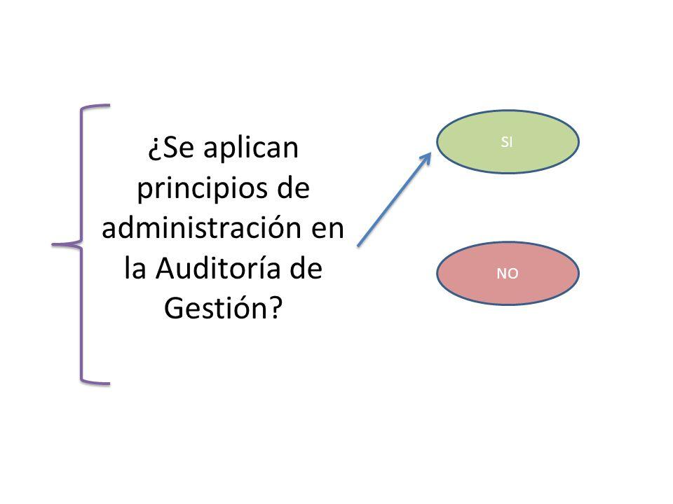 ¿Se aplican principios de administración en la Auditoría de Gestión