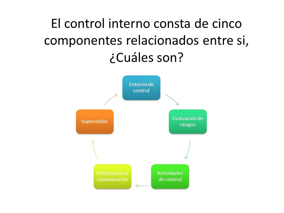 El control interno consta de cinco componentes relacionados entre si, ¿Cuáles son