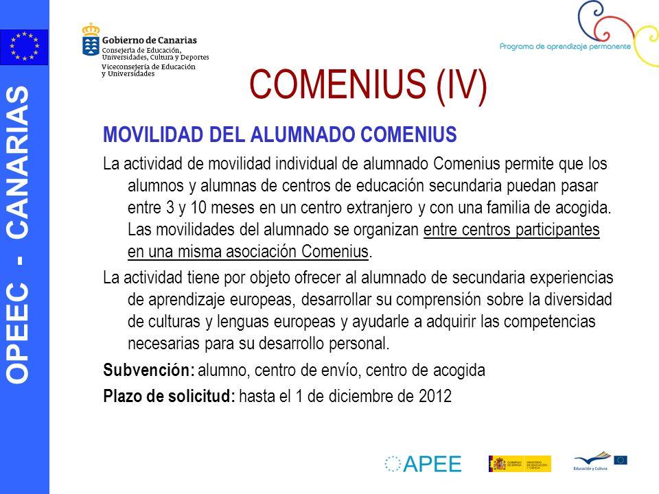 COMENIUS (IV) MOVILIDAD DEL ALUMNADO COMENIUS