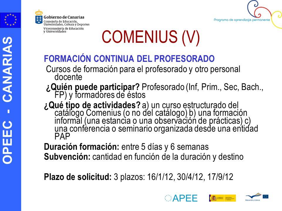 COMENIUS (V) FORMACIÓN CONTINUA DEL PROFESORADO