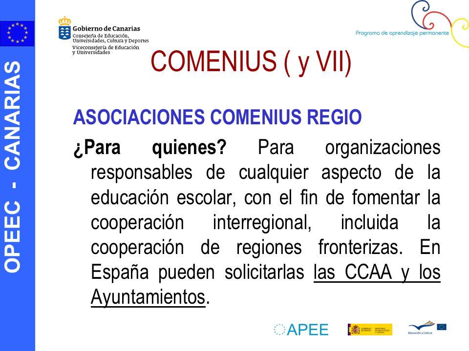 COMENIUS ( y VII) ASOCIACIONES COMENIUS REGIO