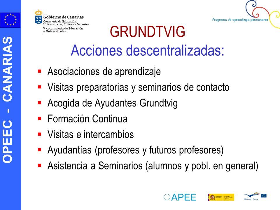 GRUNDTVIG Acciones descentralizadas: