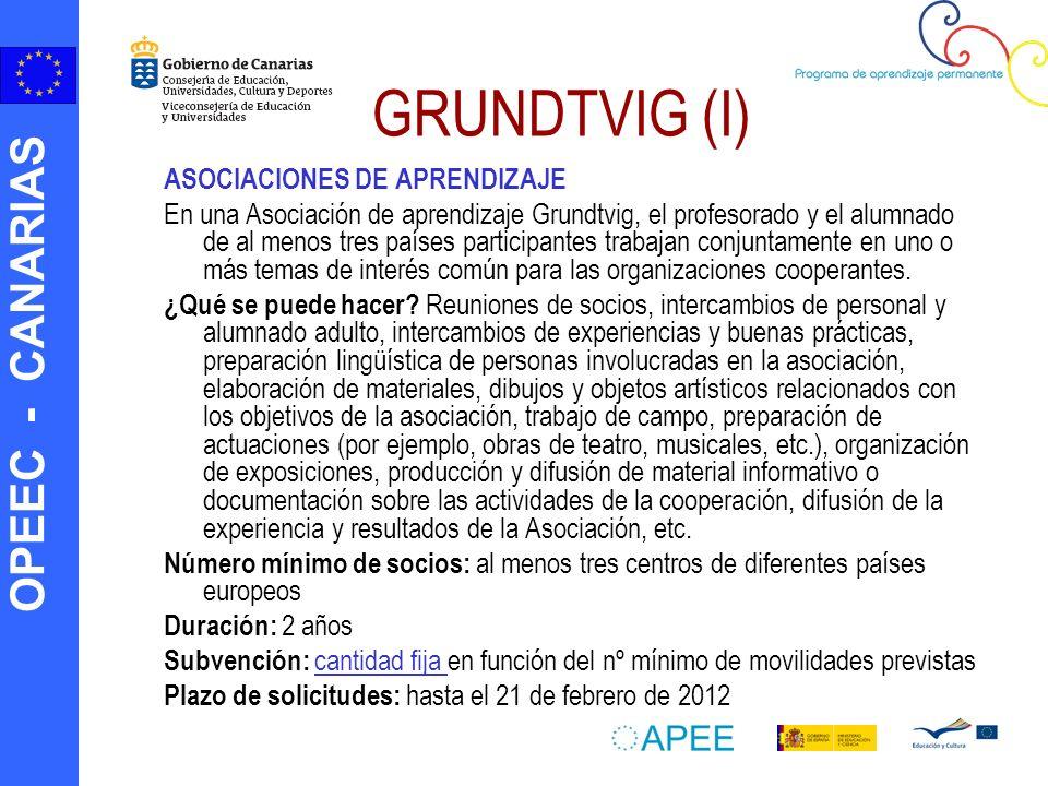 GRUNDTVIG (I) ASOCIACIONES DE APRENDIZAJE