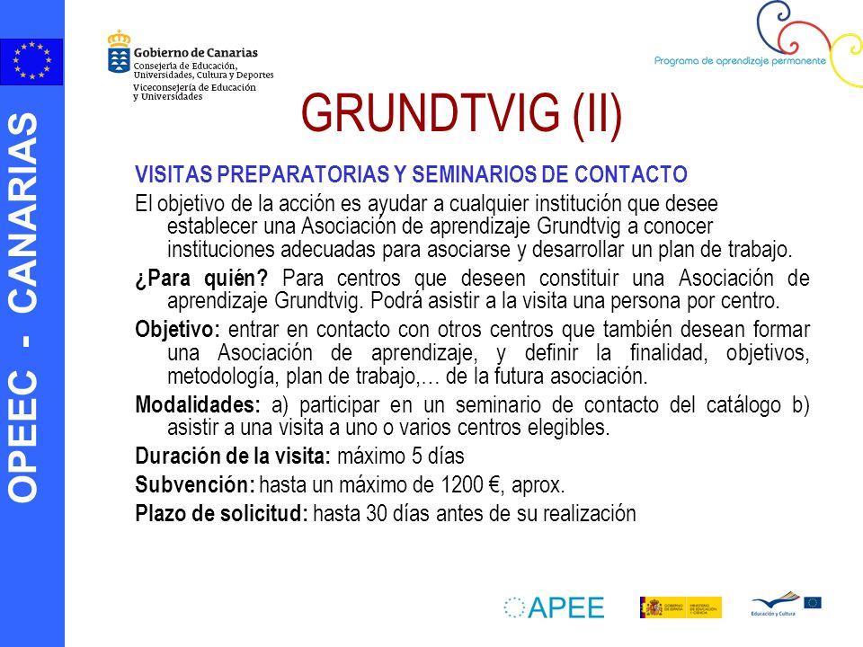 GRUNDTVIG (II) VISITAS PREPARATORIAS Y SEMINARIOS DE CONTACTO