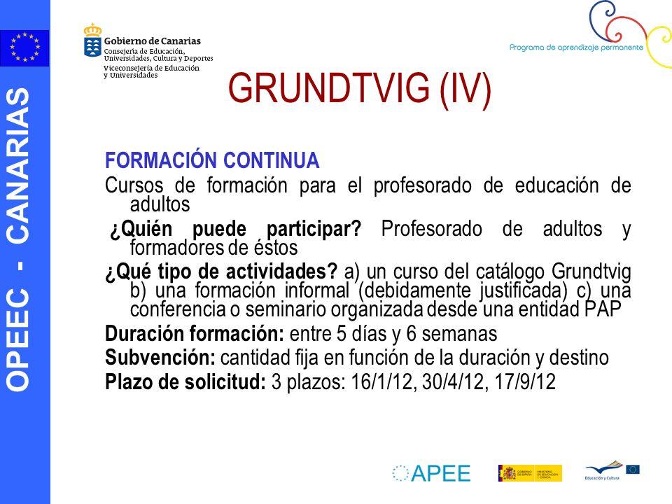 GRUNDTVIG (IV) FORMACIÓN CONTINUA