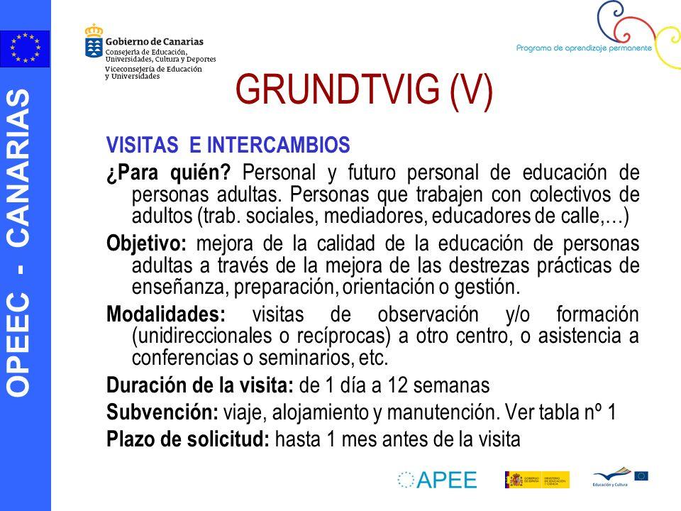 GRUNDTVIG (V) VISITAS E INTERCAMBIOS
