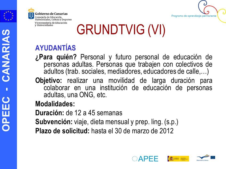 GRUNDTVIG (VI) AYUDANTÍAS