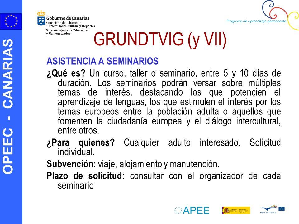 GRUNDTVIG (y VII) ASISTENCIA A SEMINARIOS