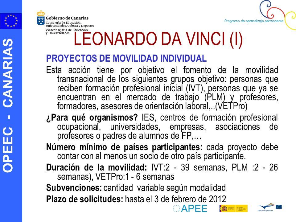 LEONARDO DA VINCI (I) PROYECTOS DE MOVILIDAD INDIVIDUAL