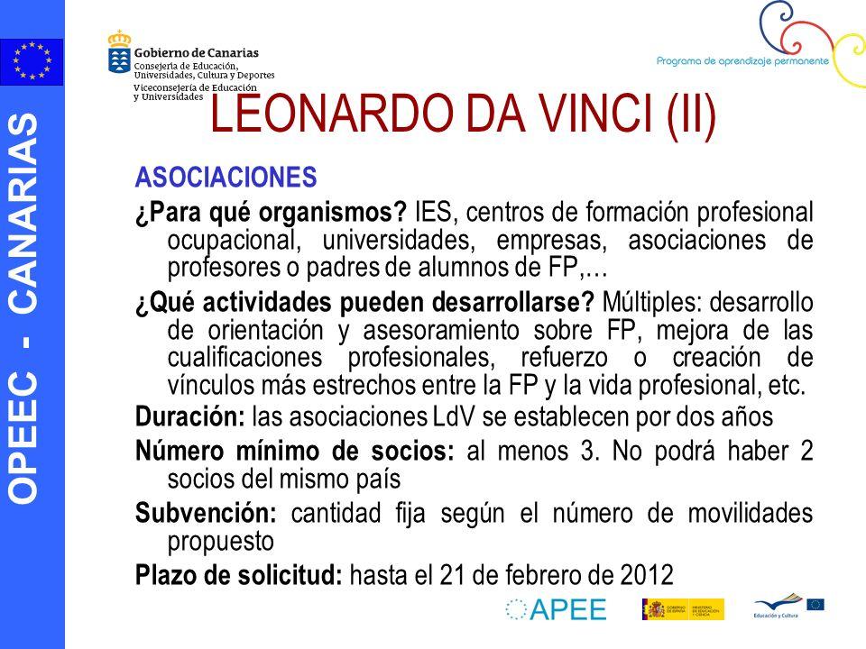 LEONARDO DA VINCI (II) ASOCIACIONES