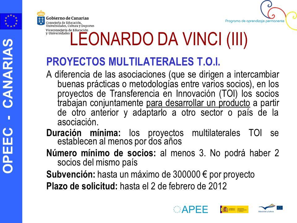 LEONARDO DA VINCI (III)